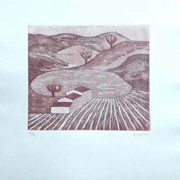 Concha Ibañez - ángeles Canut- (3)