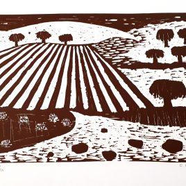 Concha Ibáñez - campos con 8 árboles Angels Canut