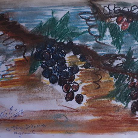Pedro Estelrich -Angels Canut - Barcelona (1)