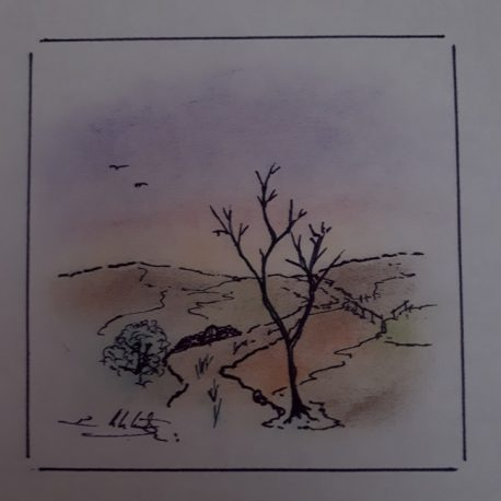 Pedro Estelrich - Angels Canut - Barcelona -