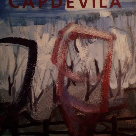 Capdevila Exposico Antologica Angels Canutc