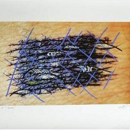69 T.M. Pedro Estelrich - Angels Canut